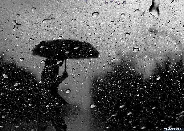 Погода в Саратовской области на сегодня - понедельник 27 сентября 2021 года