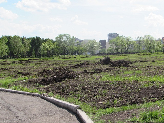 Очертания обновлённого парка становятся отчётливее