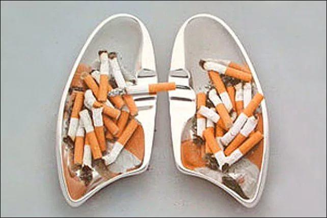 Семь правил для курящих