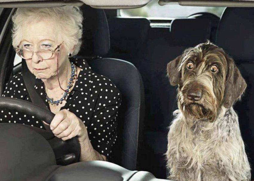 80-летняя женщина устроила ДТП на перекрёстке Советской и Грязнова