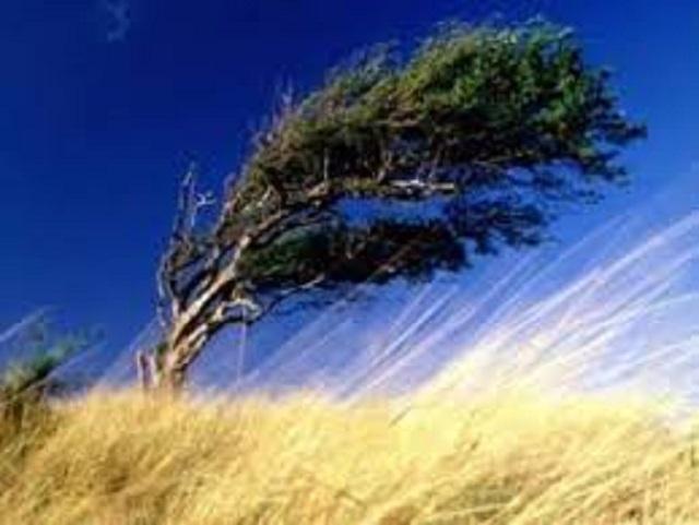 Тепло и очень ветрено