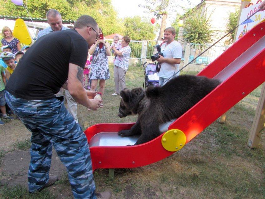 Медвежонок опробовал детскую площадку в Магнитке
