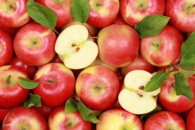 За польские яблоки могут посадить