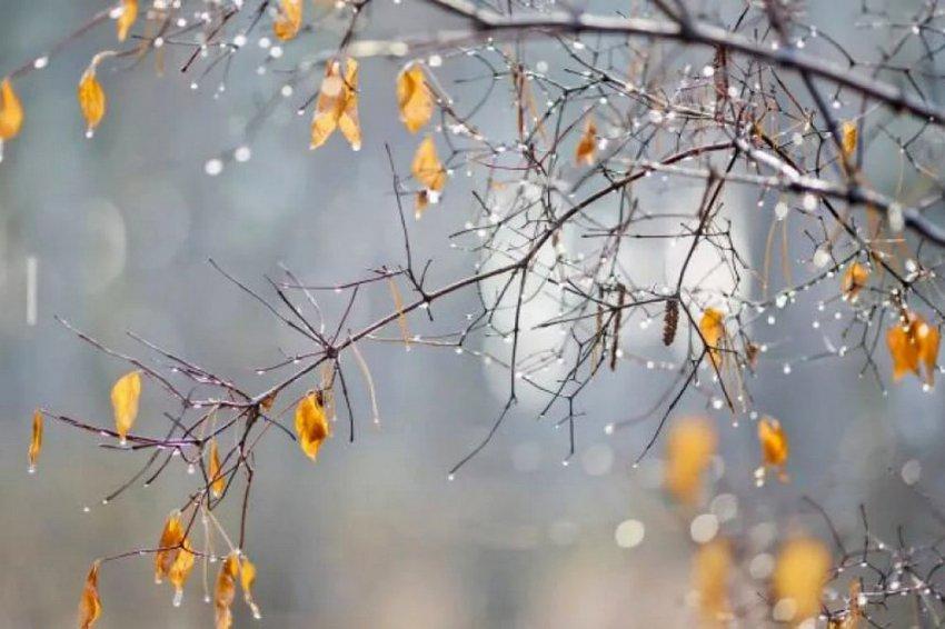 Ветер и небольшой снег