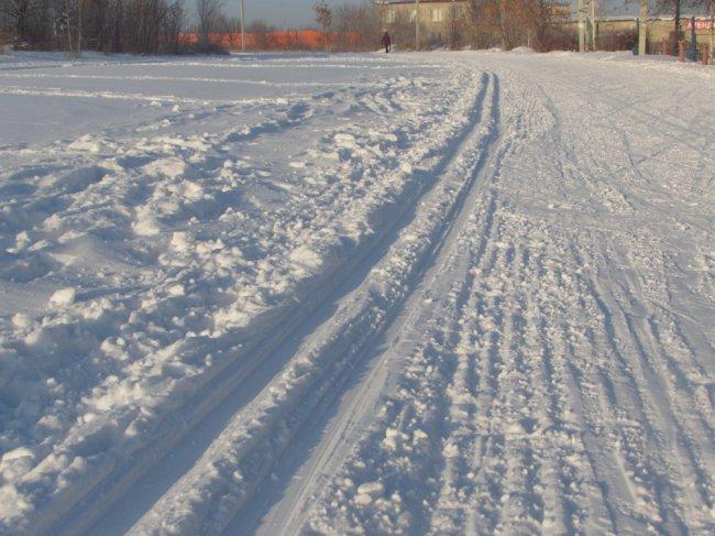 Каждому по лыжне