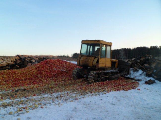 Двадцать тонн под гусеничным трактором