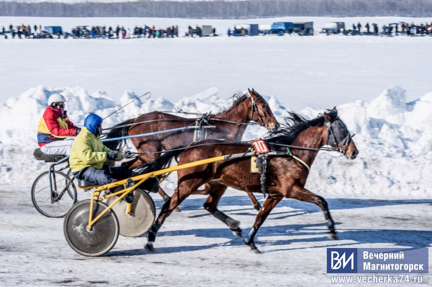 ХХIII конно-спортивные
