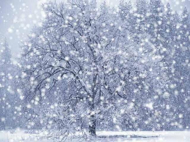 А снег не знал и падал