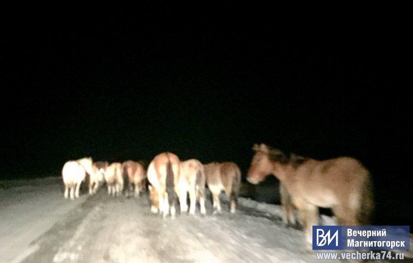 Внимание! На дороге 100 лошадиных сил