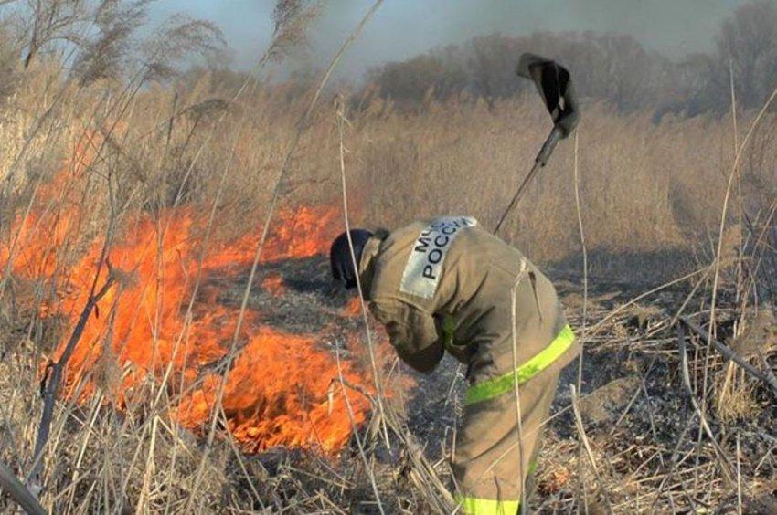 В городе горит сухая трава и мусор