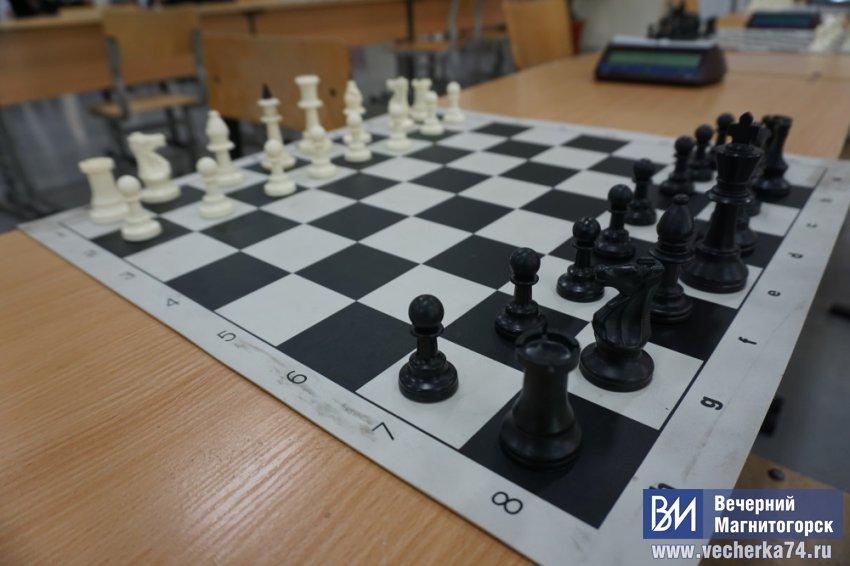 Маша и медведь засели за шахматы