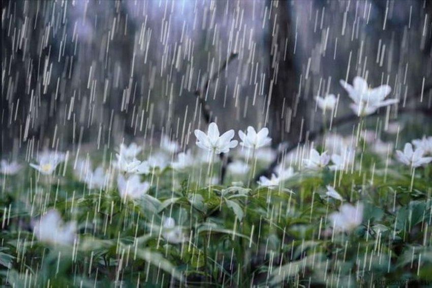 Дождь не может длиться вечно…