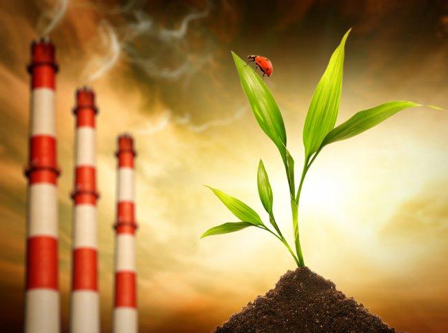У нас «серебро» экологического антирейтинга