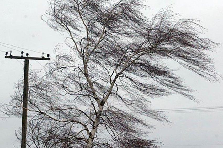 Ожидается сильный ветер