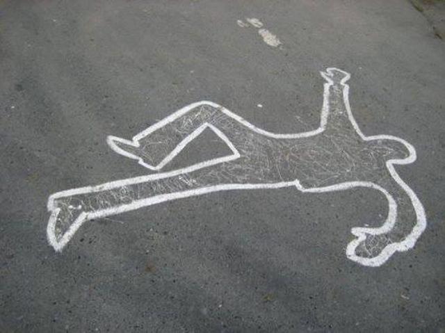Пострадали два пешехода и один «пешелёжий»