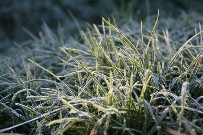 Зима начнётся 13 ноября