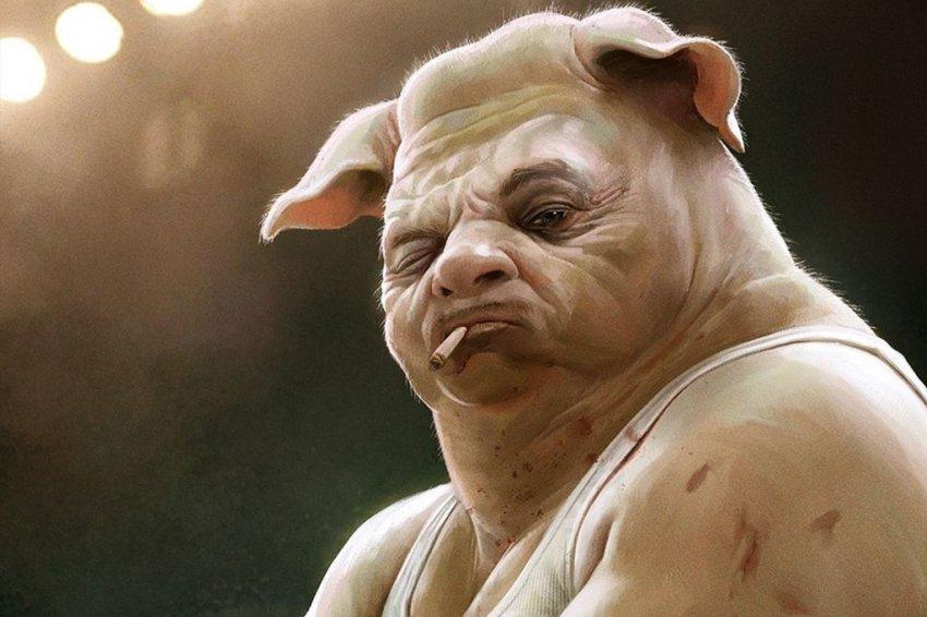 Когда соседи – свиньи