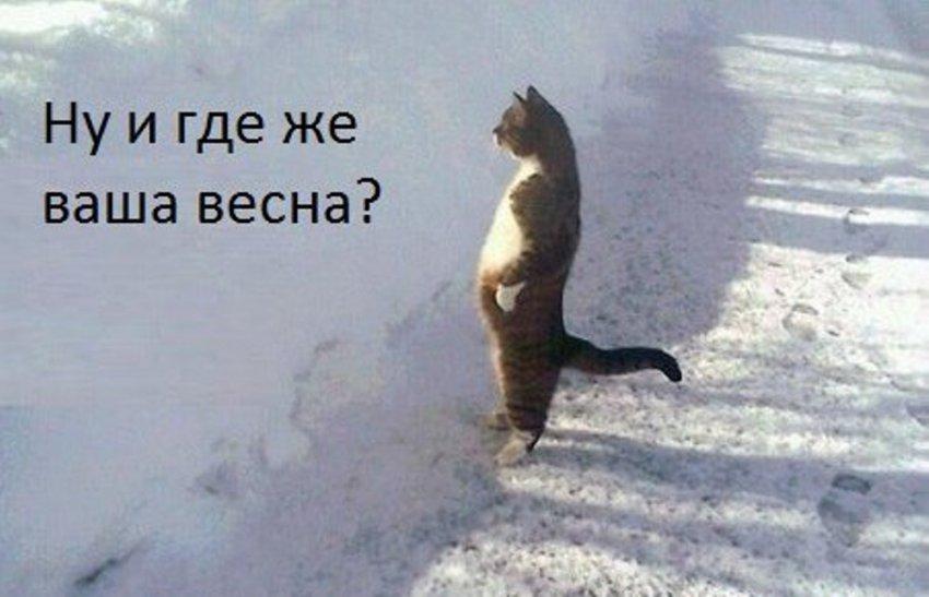 Днём - март, вечером - снова февраль