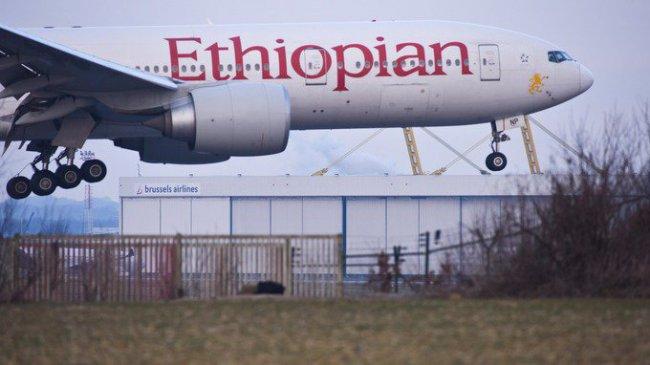 При крушении самолета никто не выжил
