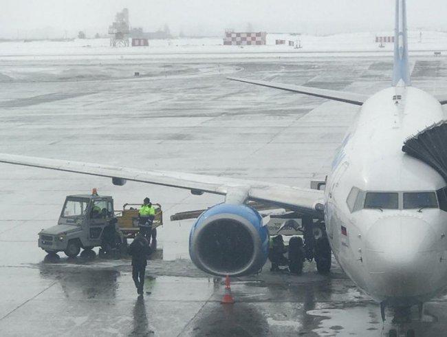 Не смогли вылететь вовремя из-за порезанных колёс