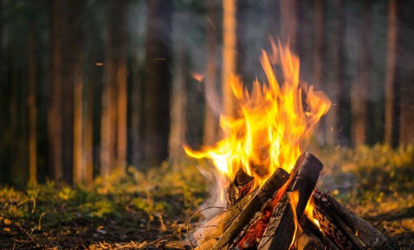 В области начался пожароопасный сезон
