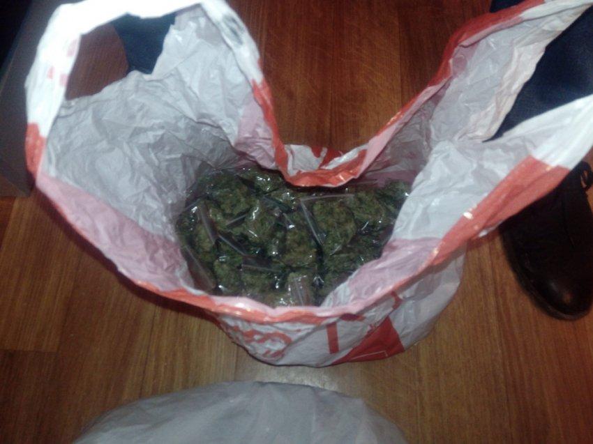 100 грамм марихуаны и плантация конопли