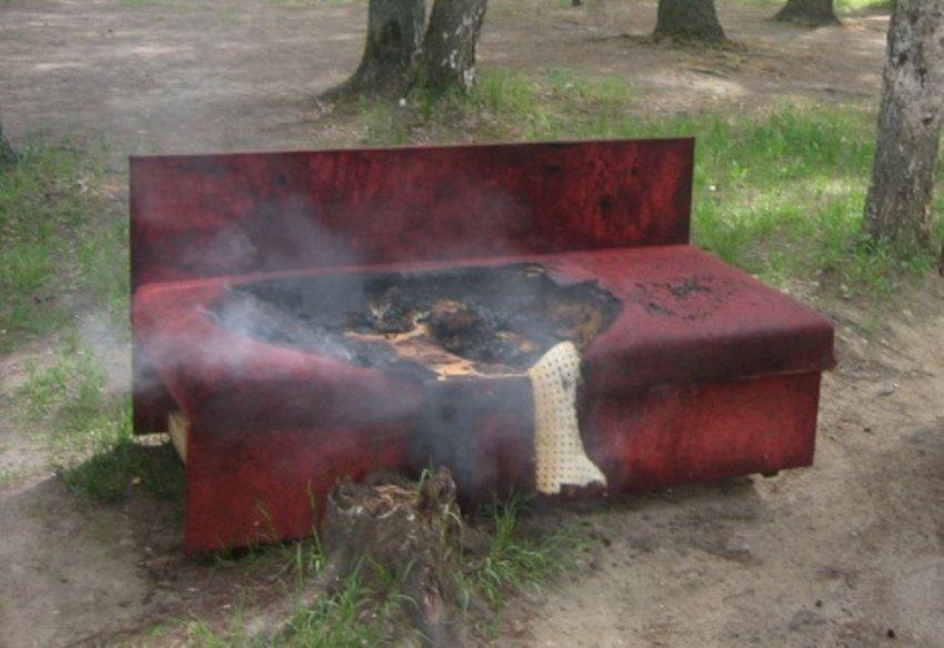 Житель Брянска во время весенней уборки сжёг полтора миллиона