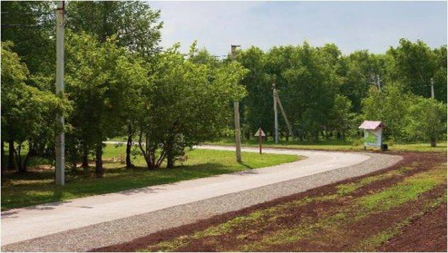Добро пожаловать в парк!
