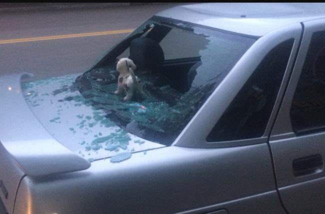 Свой гнев мужчина выместил на автомобиле бывшей жены