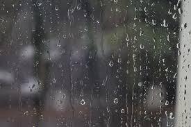 Возможен дождь