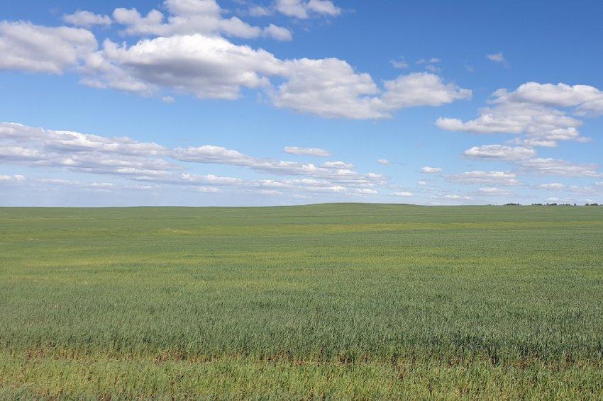 Оренбургские степи похожи на заставки Windows