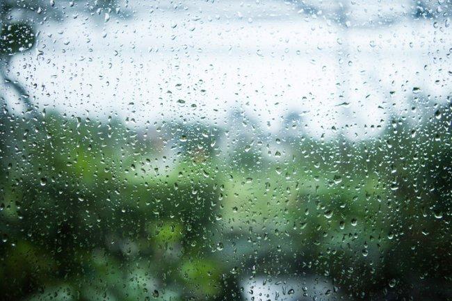 Утром дождик