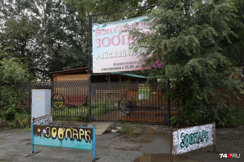 Неизвестные убили животных в контактном зоопарке Челябинска