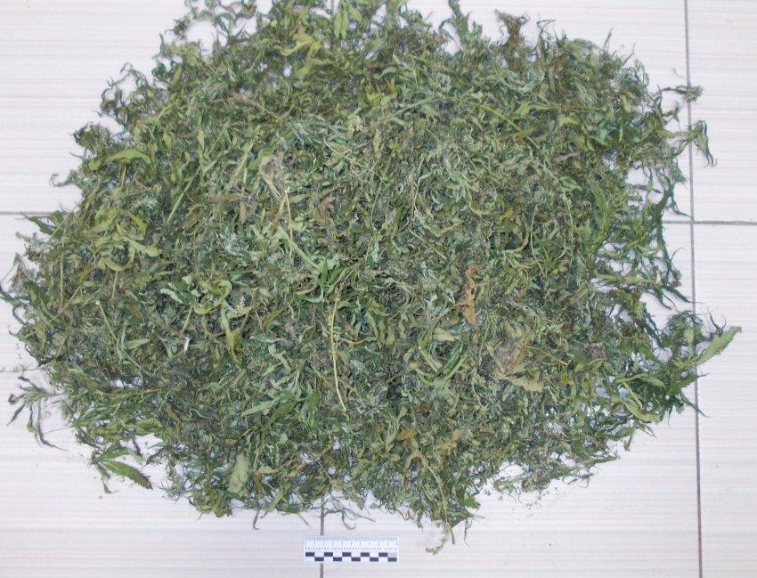 Двое магнитогорцев попались с марихуаной в кармане