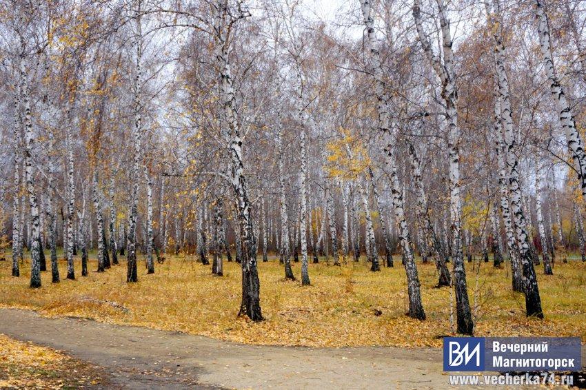 Осень жизни, как и осень года...