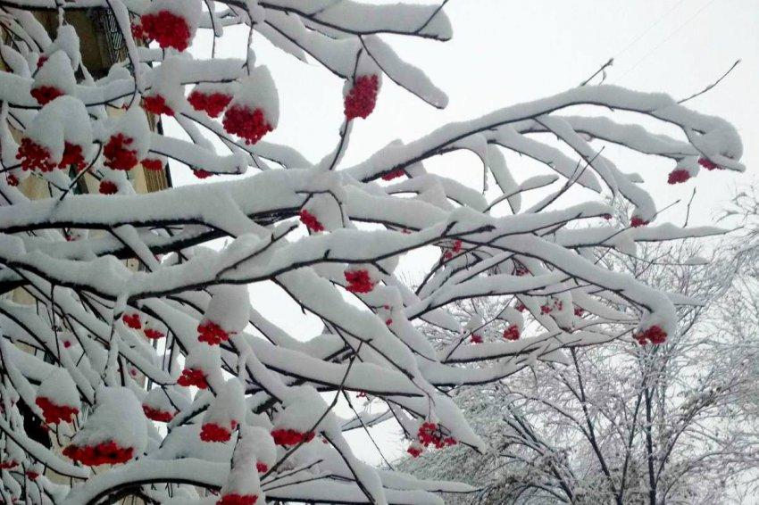 С первым снегом, земляки!