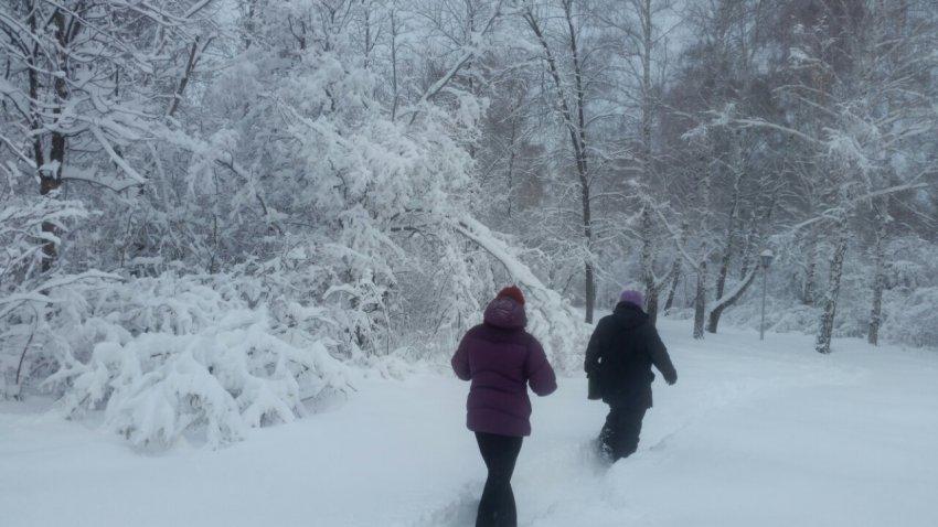 И снег, и бег...