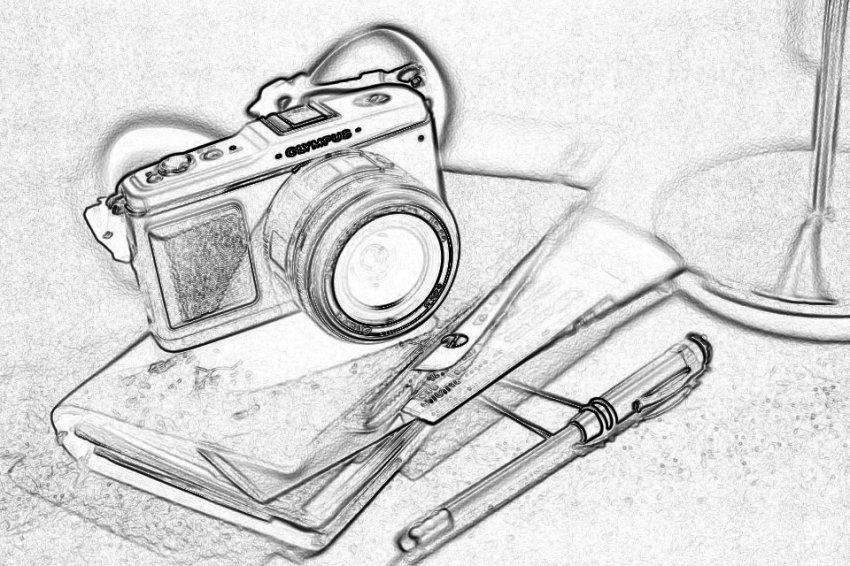 Поединок камер и перьев