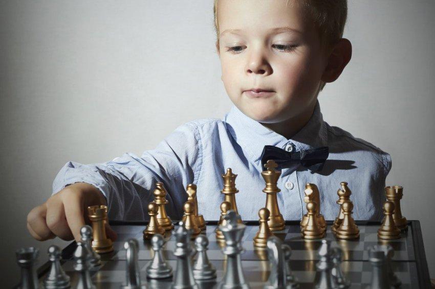Более 13 тысяч детей осваивают шахматную грамотность