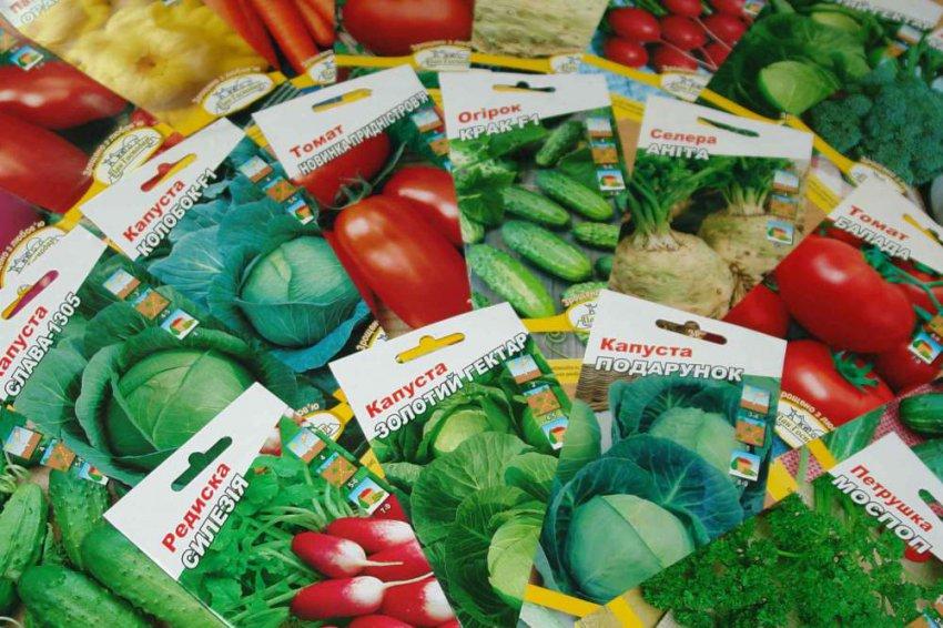 Покупка семян для сада обошлась почти в 125 тысяч рублей
