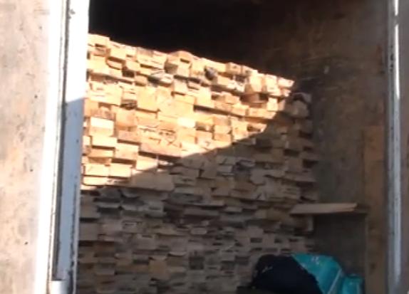 Пытались вывести контрабандный лес в Казахстан