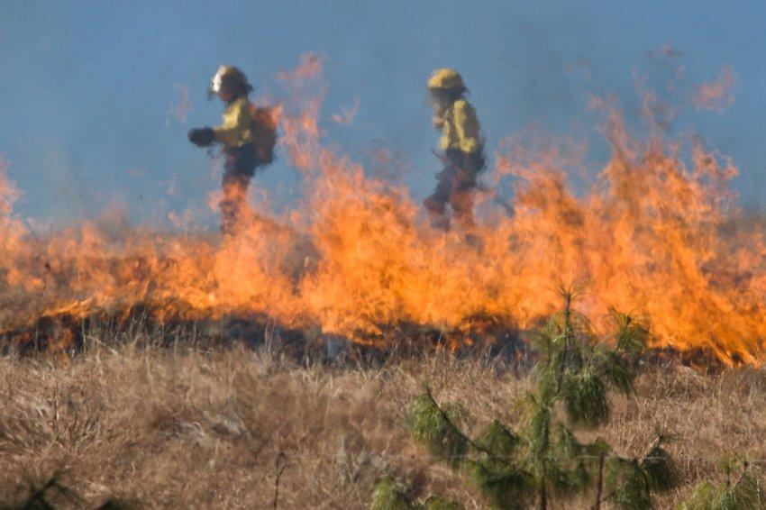 Сжигание травы закончилось трагедией