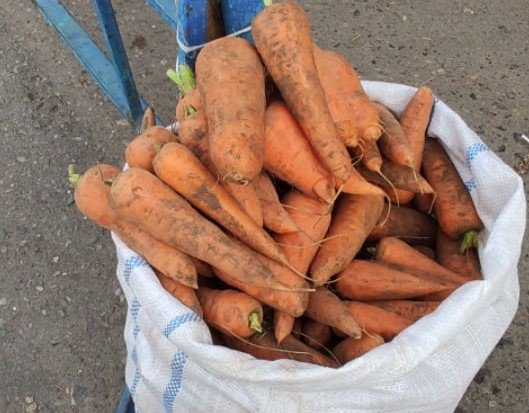 Почём морковка?