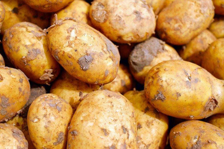 Известный доктор рассказал, когда есть картофель опасно для здоровья
